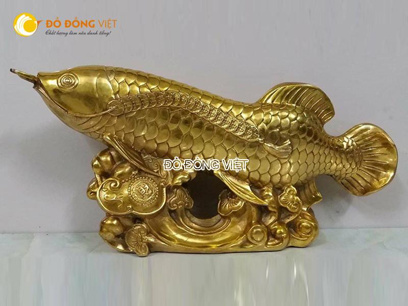 Cá rồng bằng đồng